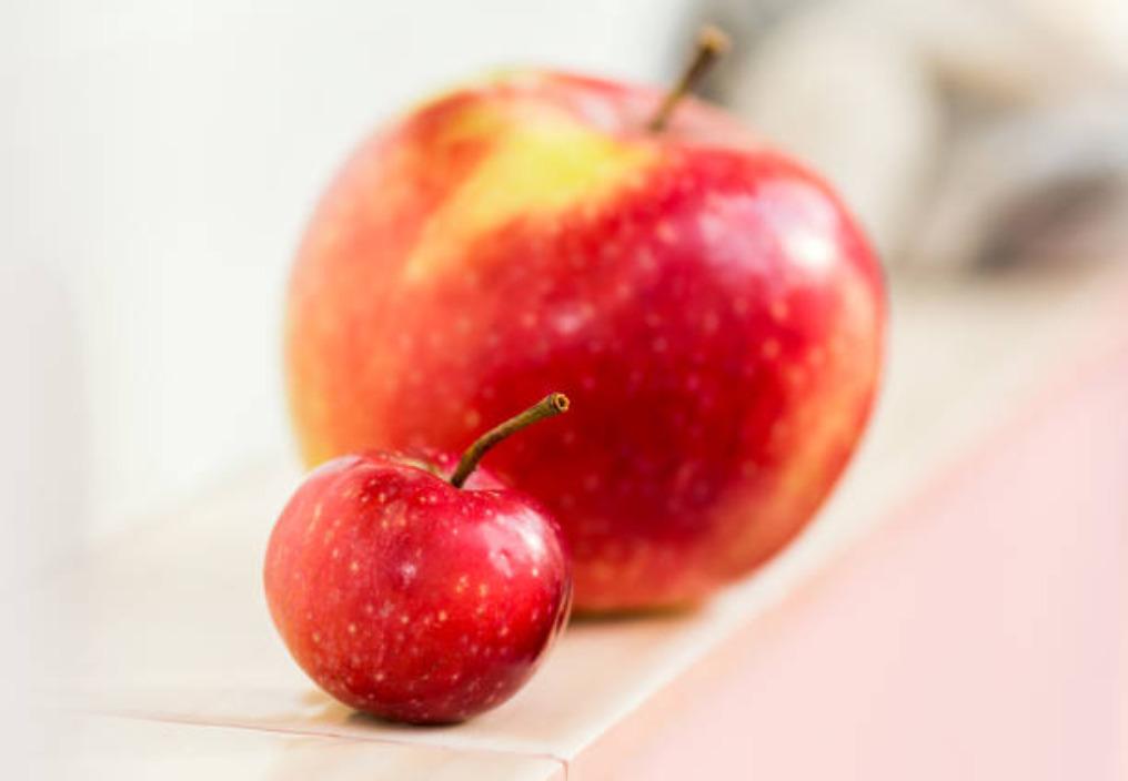 Lieknėjimas ir nutukimo gydymas, arba būdai, kaip numesti svorio. II dalis